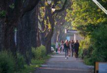 Sombor - Staparski put